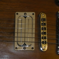 Other L-500 / OBL-500 / L-900 guitar pickup. 37-